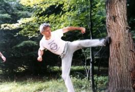 ClassicTKD_11 tree kicking